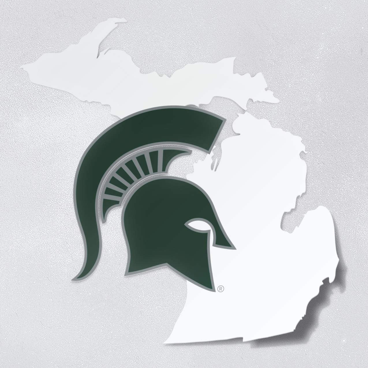NCAA Michigan State Spartans  4.5-by-17 Sign