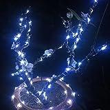 ER CHEN 99ft Led String Lights,300 Led Starry