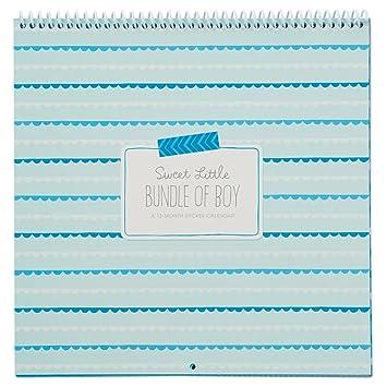 amazon com hallmark baby boy sticker and photo 13 month calendar