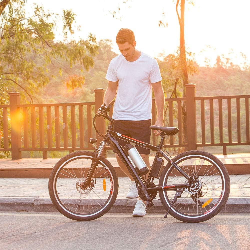Speedrid E-Bike