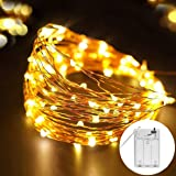 DistrictMaster 50 LED String Lights with Battery Box for Decorations (5 m, Warm White)