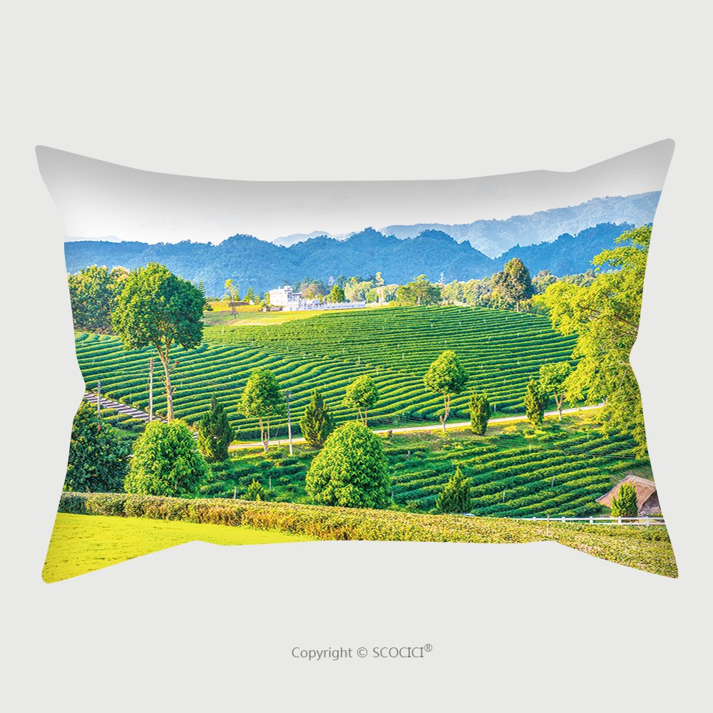Custom Satin Pillowcase Protector Landscape View Of Tea Farm In Thai Thailand 532856521 Pillow Case Covers Decorative by chaoran