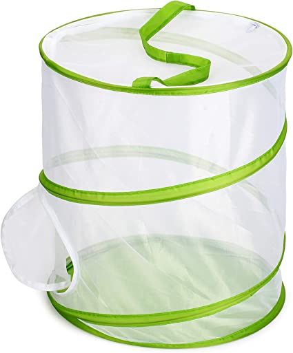 Trasfit Pop-up Insect and Butterfly Habitat Cage Terrarium 12 x 14 Inches Tall