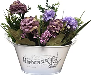Ashley ZC Concise Style White Metal Planters, Iron Flower Pot - Garden Container Box Succulent Bucket Basket with Handles - Indoor or Outdoor Decor