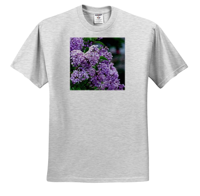 3dRose Jos Fauxtographee Syringa Lilac Bush with Purple Flowers up Close Syringa T-Shirts