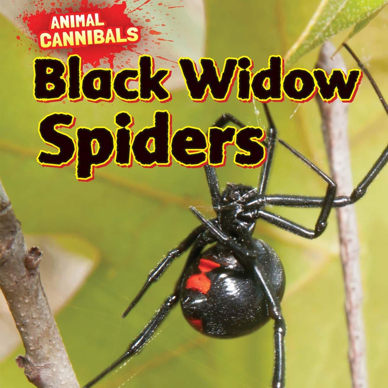 Black Widow Spiders (Animal Cannibals): Sam Hesper: 9781477757482 ...
