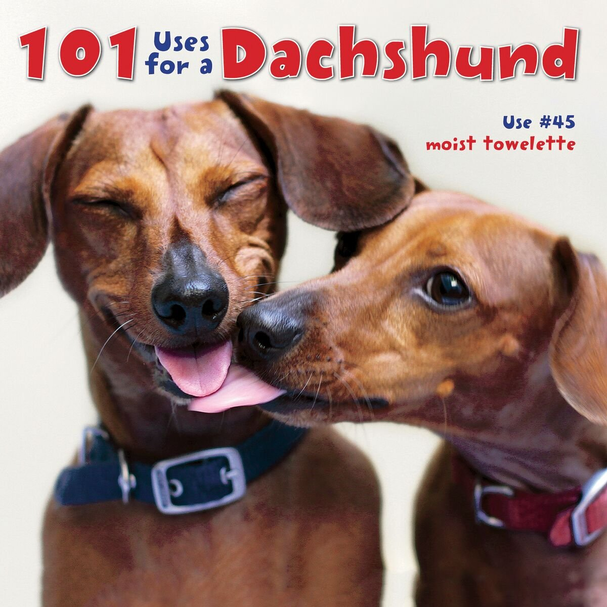 Download 101 Uses For A Dachshund PDF