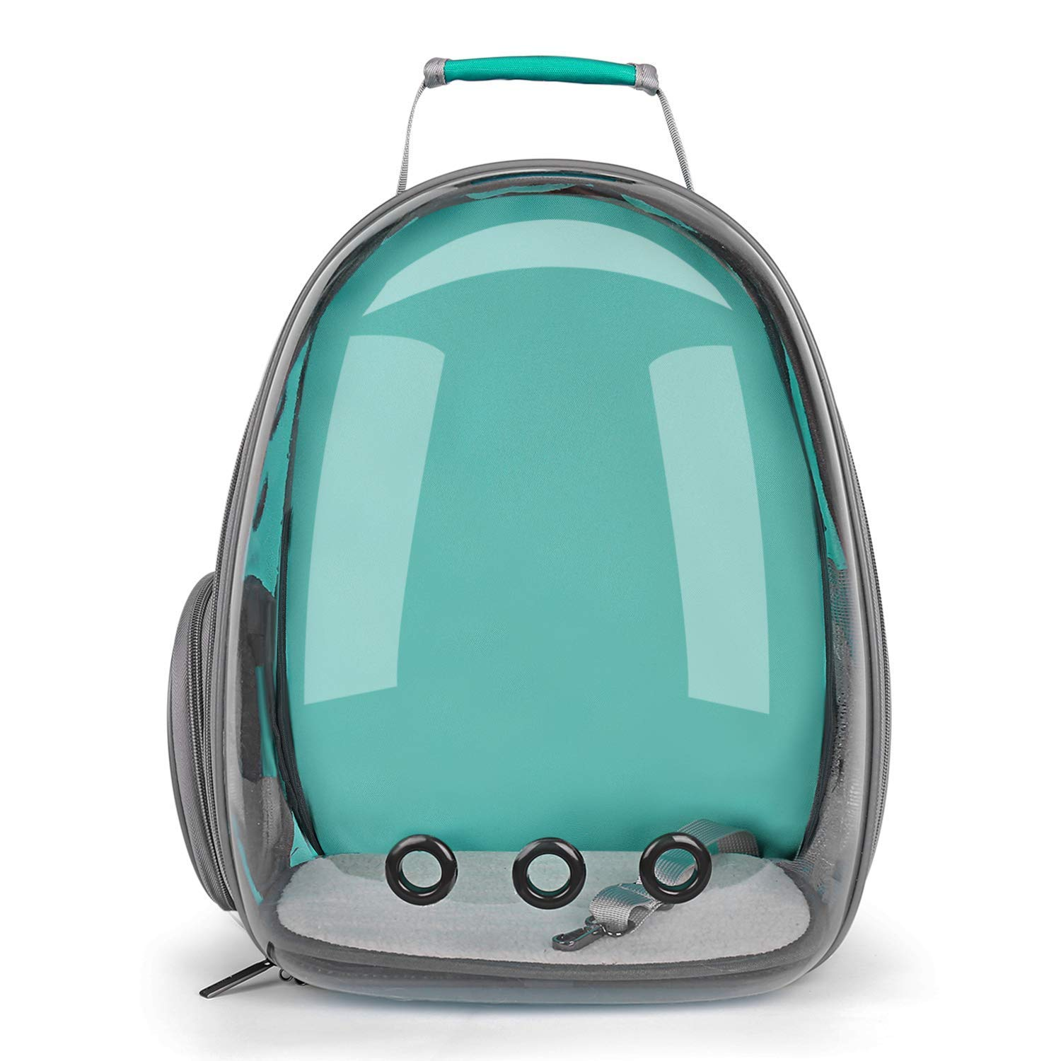 Transparent-Mint Green Texsens Pet Backpack Carrier for Small Cats Dogs   Broad View, Ventilated Design, Safety Straps, Buckle Support   Designed for Travel, Hiking & Outdoor Use(Transparent-Mint Green)