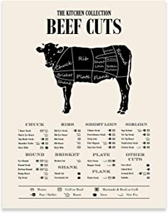 Beef Butcher Guide Poster Prints - Kitchen Wall Decor - (11 inches x 14 inches) Cow Meat Chart - Cuts of Meat