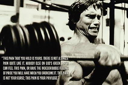 Arnold Schwarzenegger Motivational Inspirational Quote Poster 13x19