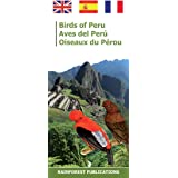 Peru Birds (Laminated Foldout Pocket Field Guide) (Tropical Wildlife Field Guide) (English and Spanish Edition)