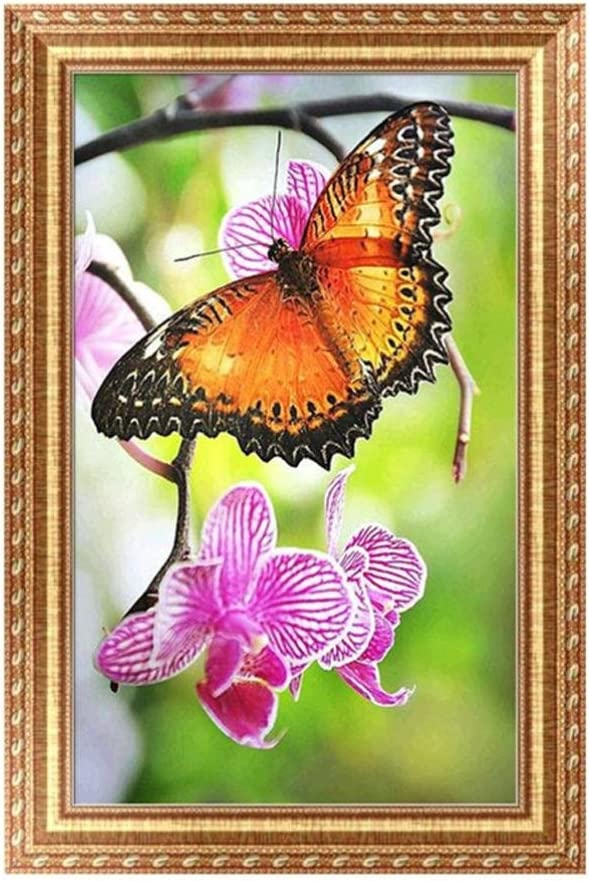 Butterfly Parrot 5D DIY Diamond Painting Staron Butterfly Wolf Diamond Embroidery Rhinestone Painting Cross Stitch Kit Wall Art Decor 5D Diamond Painting by Number Kits Home Decor