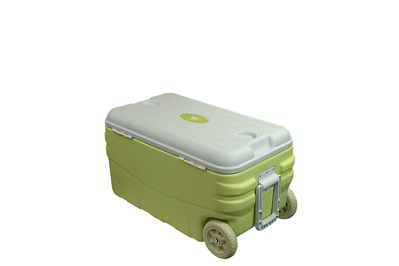 10T Outdoor Equipment Fridgo 80 - Nevera para acampada, color ...