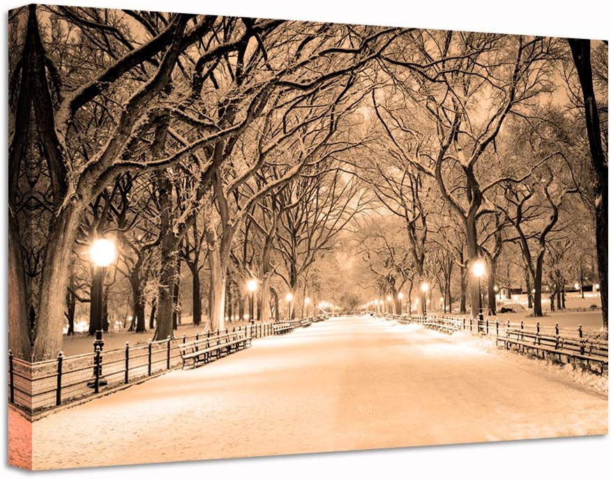 Nachic Wall Vintage Canvas Many popular brands 70% OFF Outlet Print Central Snowy Park Art Pic