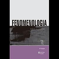 Fenomenologia (Coleção Pensamento Moderno)