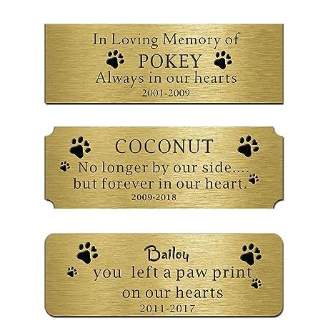 Amazon.com: Placa personalizable con placa de latón, placas ...