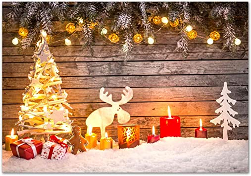 Rustic Christmas Backdrop on Glare Free Vinyl 7/' wide by 5/'
