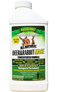 Nature's Mace Deer and Rabbit Repellent Concentrate