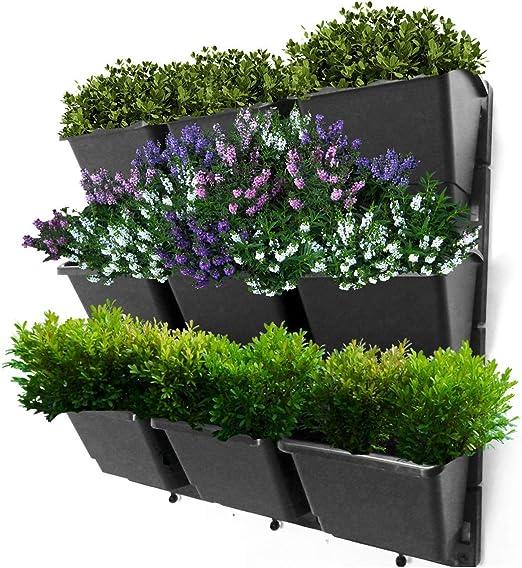 Macetas de pared verticales para jardín, verdes, verdes, verdes, para cultivar flores y plantas suculentas, verduras y hierbas. Crear un hermoso salón pared fácil DIY Kit: Amazon.es: Hogar