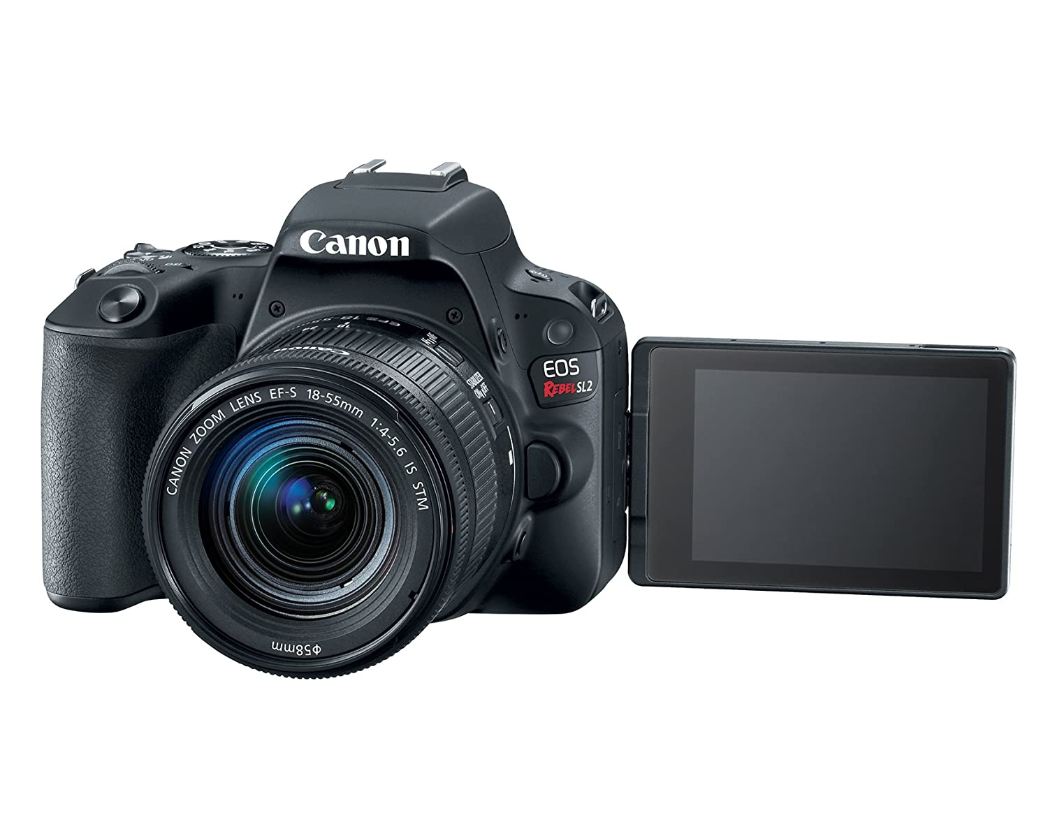 Amazon.com : Canon EOS Rebel SL2 DSLR Camera with EF-S 18-55mm STM ...