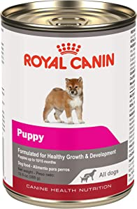 Royal Canin Canine Health Nutrition Puppy Loaf in Sauce