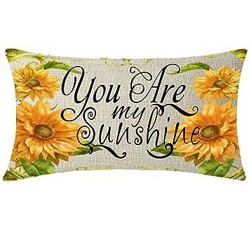 Amazon.com: NIDITW - Funda de cojín de lino y algodón ...