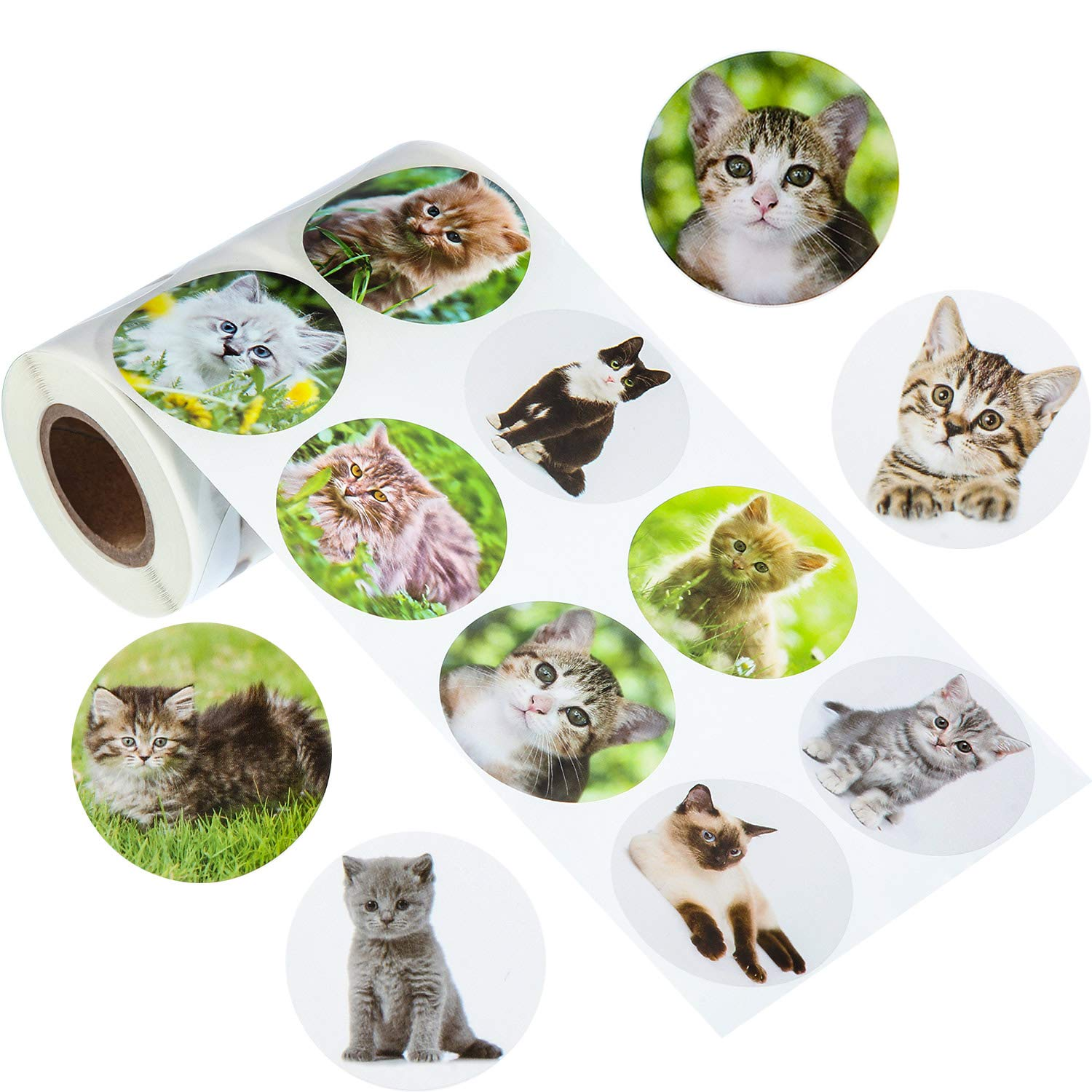 Personalized Arts and Crafts meekoo 500 Pieces Cat Photo Stickers Cat Roll Stickers Cat Paper Stickers for Party Favors Novelty Toys Creative Scrapbooks Game Prizes Wall Decals 12 Styles