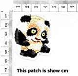 Cute Panda Bear Cartoon Animal Wild Cartoon Chidren