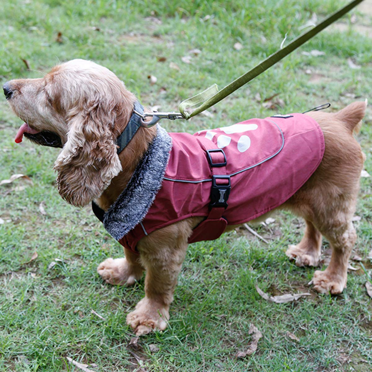 TFENG Waterproof Dog Coat Fleece Lining Dog Jacket with Fur Collar Blue M