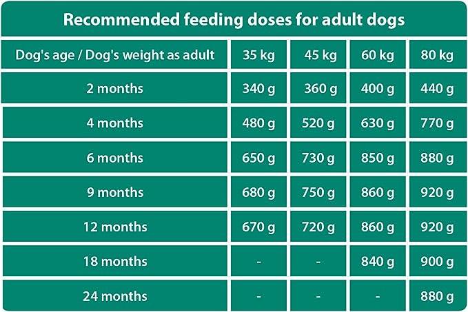 The Hunger of The Wolf Alimento seco para cachorros y perros jóvenes de razas grandes y gigantes, con alto contenido de carne de aves de corral, 14 kg