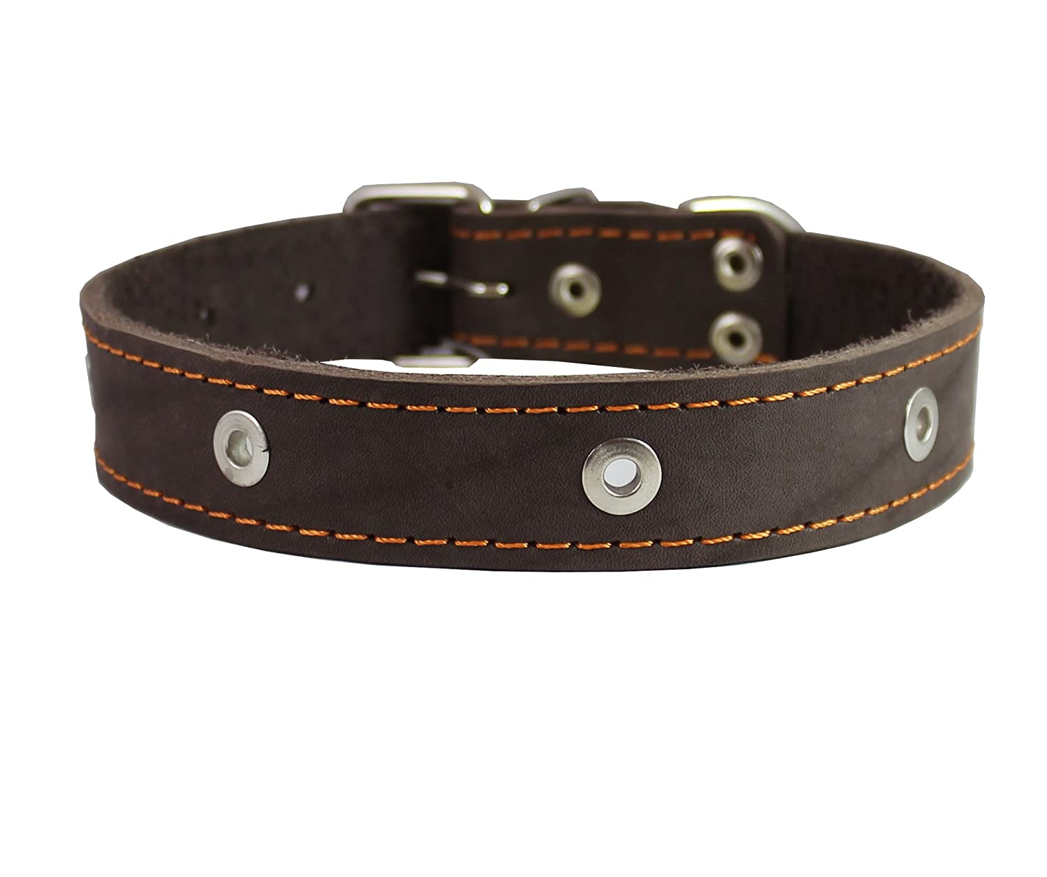 Genuine Leather Studded Dog Collar, Brown, 1.25  Wide. Fits 16 -20  Neck. Amstaff