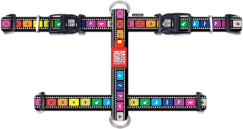 Brust: 41-52 cm Hundgeschirr Max Molly Hals: 30-46 cm Gr/ö/ße: S bis 22 kg H-Geschirr Gepolstert Movie-Design