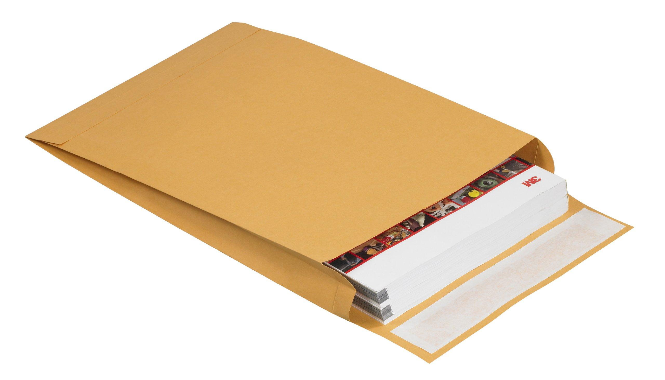 Redi-Seal EN1074 Envelopes, 10'' x 15'' x 2'', Kraft (Pack of 100)