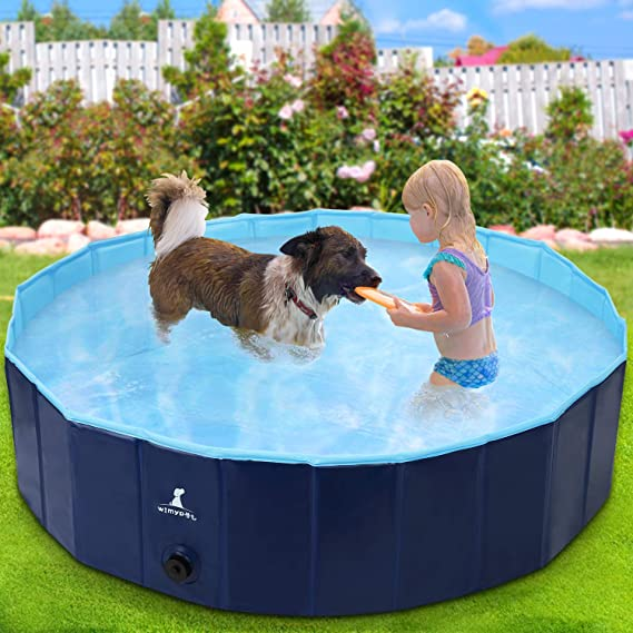 Wimypet Piscina Mascotas, Piscina para Perros, Bañera Plegable de Mascotas Adecuado para Interior, Piscina con PVC Antideslizante para Perros/Gatos/Niños- Azul Claro (160 * 30CM): Amazon.es: Productos para mascotas