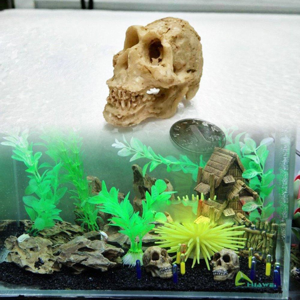 SHJNHAN Halloween Aquarium Decorative Resin Skull Crawler Dragon Lizards Decoration