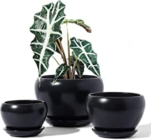 LE TAUCI Plant Pot Indoor, 5.7+4.5+3.5 Inch Ceramic Planter Pots with Drainage Hole and Saucer, Small to Large Sized, Flower Pot for Indoor Garden Kitchen Decor, Set of 3, Black (Plants not Included)