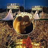 MAXINDA Holiday M5 Faceted LED Christmas Tree