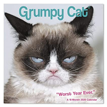 Grumpy Cat Calendar 2020 January Amazon.: 2020 Grumpy Cat Wall Calendar, Mini Calendar