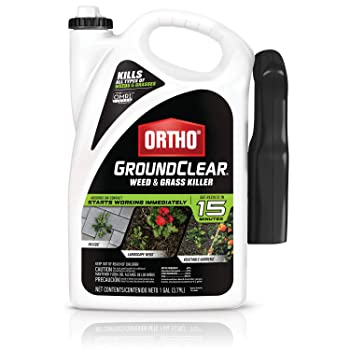 Ortho GroundClear Weed and Grass Killer