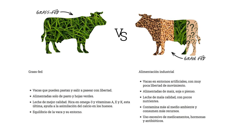 Proteína Whey - Natural Athlete - 85% Proteína aislada de leche de vacas de pasto - Grass-fed, 100% natural, sin azúcar añadido. 750gr ó 350gr.