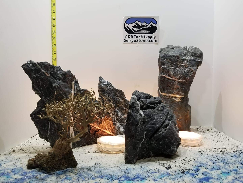Amazon Com 31 00 Lbs Black Seiryu Custom Designed Aquascape Bonsai Aquarium Aquascaping Wysiwyg Handmade