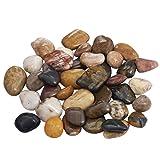 mookaitedecor 1 lb Bulk Natural Assorted Pebbles