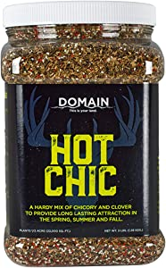 Domain Outdoor Hot Chic Deer Food Plot Seed, Great to Plant in Spring, 1/2 Acre, Hardy Mixture of PH Tolerant Perrenials, Can Last Several Years Chicory - 2 Varieties of Clover