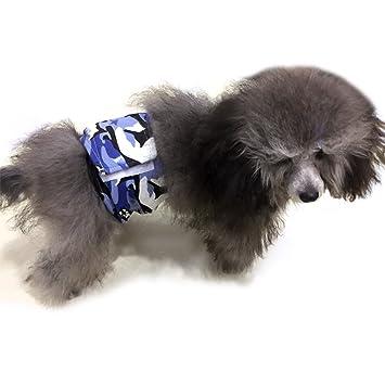 Pañales Lesypet para perros, para cachorros machos, 2 unidades lavables a máquina, para razas pequeñas y medianas: Amazon.es: Productos para mascotas