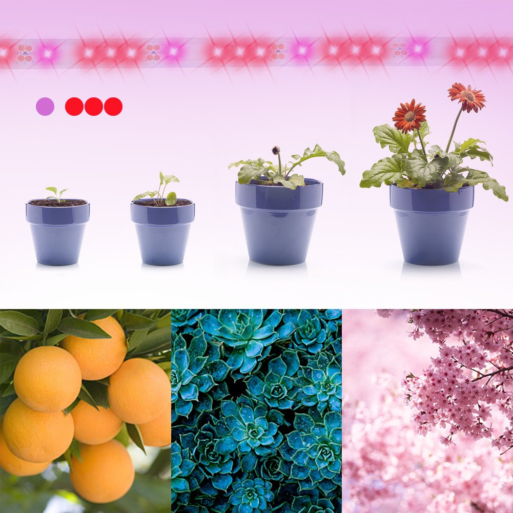 LED Plant Growth lights Red Blue 3:1for Indoor Gardening /& Horticulture -UL Certification IP67 6.6ft Waterproof Flexible Grow Rope Light LUNSY 24W LED Grow Light Strip