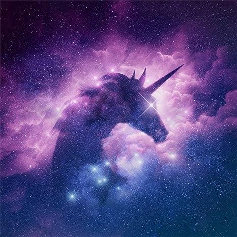 Amazoncom Lfeey 8x8ft Starry Stars Unicorn Silhouette