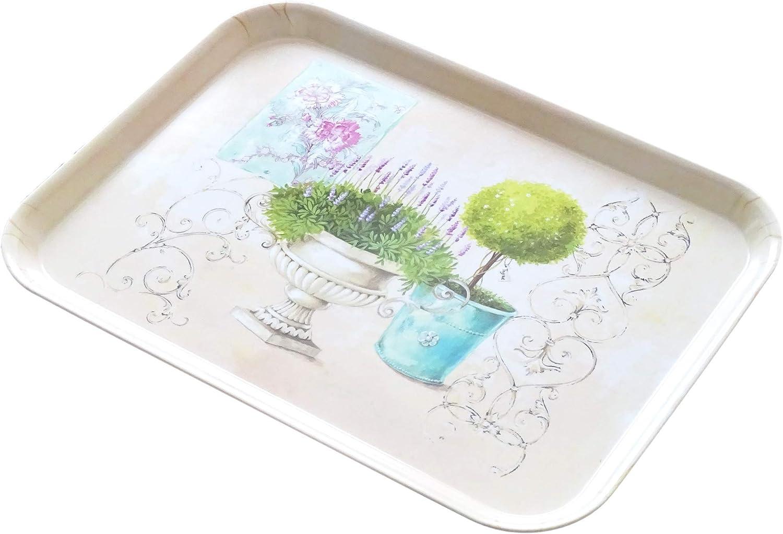 Lashuma Plateau rectangulaire en m/élamine avec poign/ée Plastique 44 x 21 cm Jardins de pommes carr/és plateaux de service imprim/és