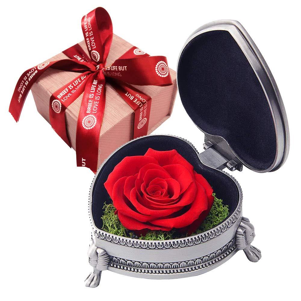 IDOXE 手作りプリザーブドフラワーローズ 枯れないバラ 高級不滅の花 愛する方への永遠の生命の花 バレンタインデー クリスマスイブ 記念日 B07MDFMKHV Red Valentine