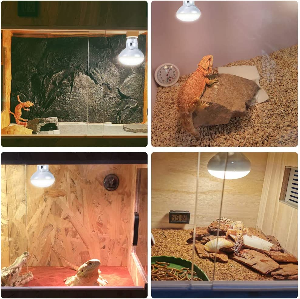 Chicks Basking Spot Heat Lamp for Reptiles Amphibian Dog Heating Use LUCKY HERP 2-Pack 50W Reptile Heat Bulb