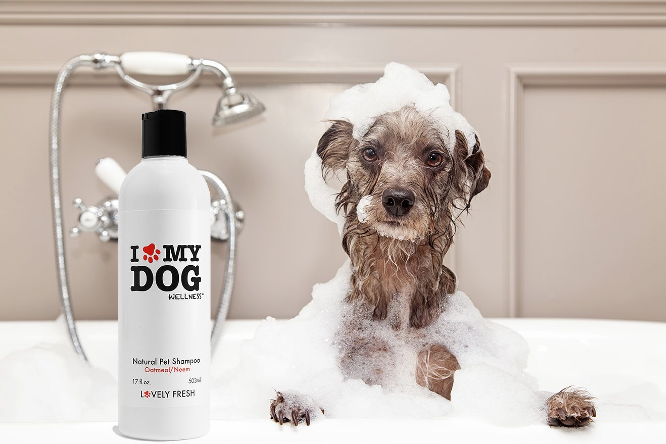 Dog Shampoo - Premium All Natural Grooming 3-in-1 Formula With Oatmeal and Neem